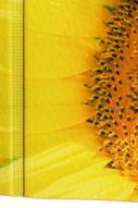 """Обложка для паспорта Эврика """"Подсолнух крупно"""", цвет: голубой, желтый. 93265"""