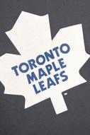 Футболка мужская NHL Toronto Maple Leafs, цвет: серо-синий. 29190. Размер XL (52)